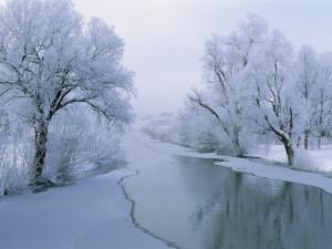winter scenes 1 (39)